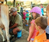 MEDIA RELEASE: Education, Not Impulsive Legislation, Required in Dairy Industry